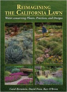 landscaping book 2